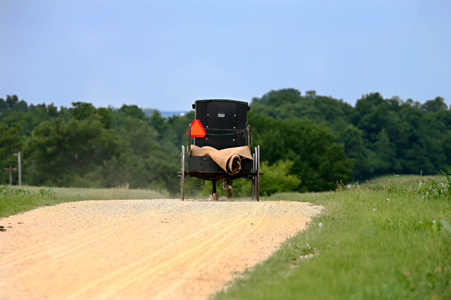 Amish Buggy in Cashton, Wisconsin; Robert Butterfield, Butterfield Photography